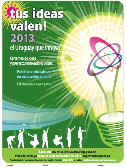 Afiche 2013 TIV