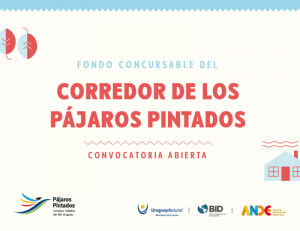 FondoConcu-300x231